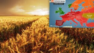 Pogoda na lato w Europie. Przewidywania amerykańskich meteorologów