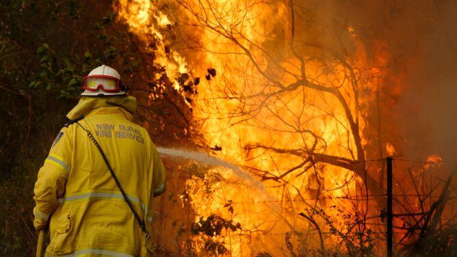 """Pożary w Australii, dym gryzie Sydney. <br />""""To cisza przed burzą"""""""