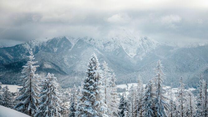 Pogoda na 5 dni: 20 centymetrów śniegu, sporo deszczu, a szansa na pogodne chwile - dla nielicznych
